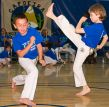 Capoeira Kicks and Escapes