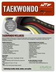 Taekwondo Wellness for Teens and Adults