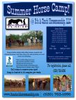 Summer Horse Camp @ It's A Cinch Horsemanship