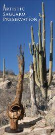 Artistic Saguaro Preservation / Catrina Briscoe