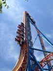 roller coaster / clipart