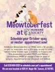 Meowtoberfest