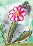 """Desert Blooms"" / DeGrazia Foundation"