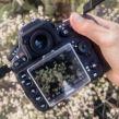 DIgital Editing Photography