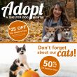 HSSA Discounted Adoptions