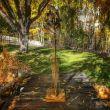 SculptureTucson Hosts Pop-up Sculpture Park at Hacienda del Sol through May 31