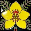 """Ceramic Tile featuring a Palo Verde Blossom, 6"""" x 6"""" / Native Seeds/SEARCH"""